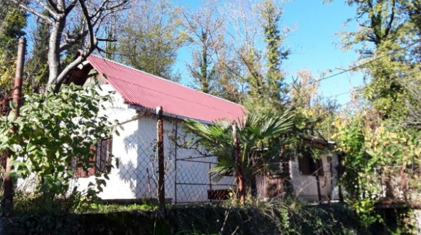 Small house with the garden in very quiet location (2)