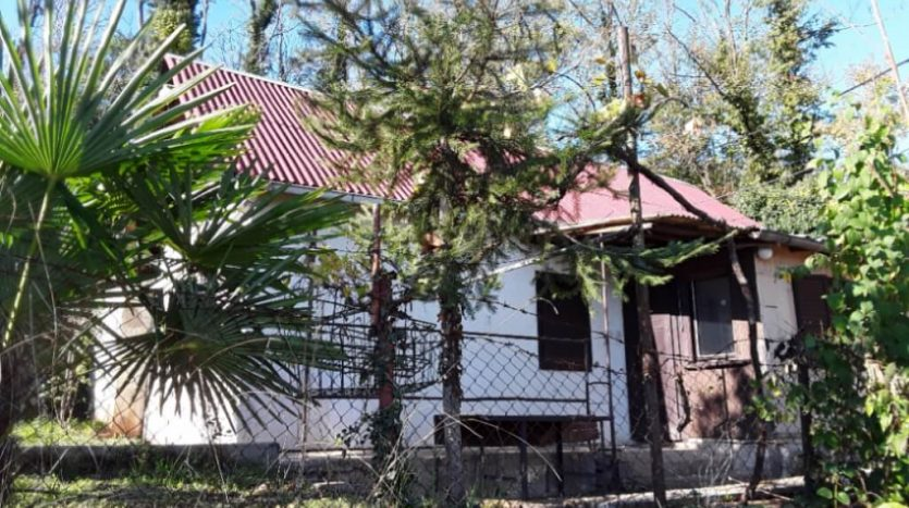 Small house with the garden in very quiet location (3)